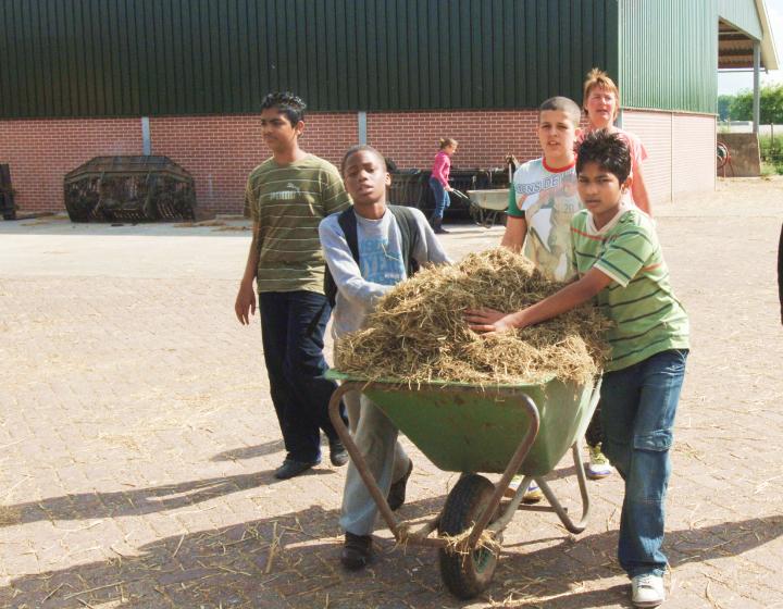 Kinderen helpen met het stro op de boerderij