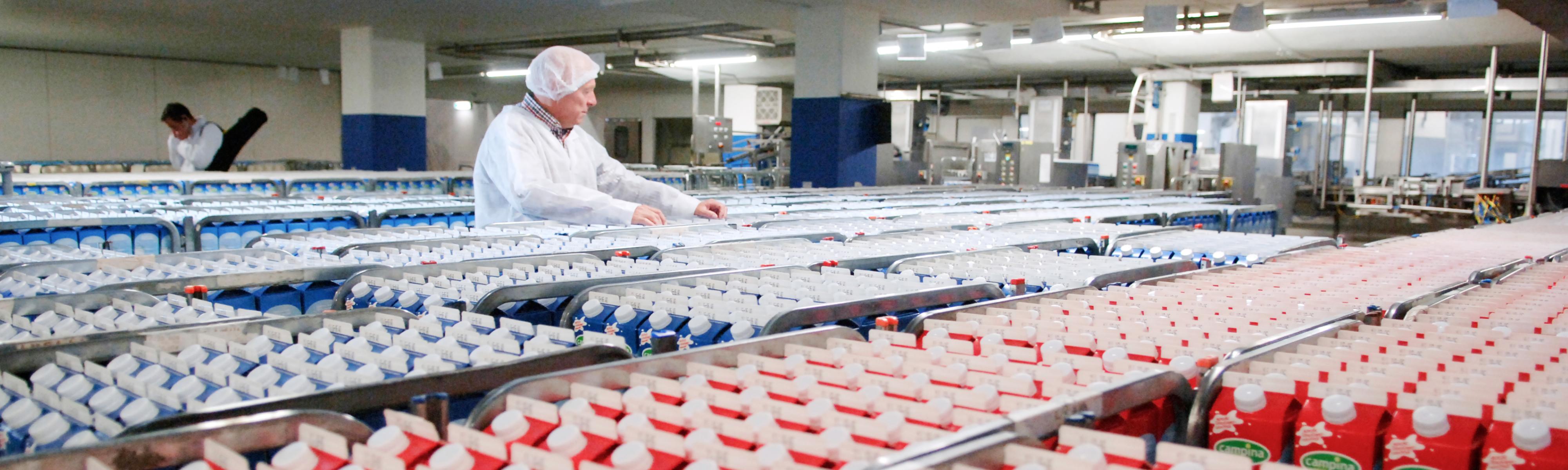 Medewerker tussen de melkpakken in de melkfabriek