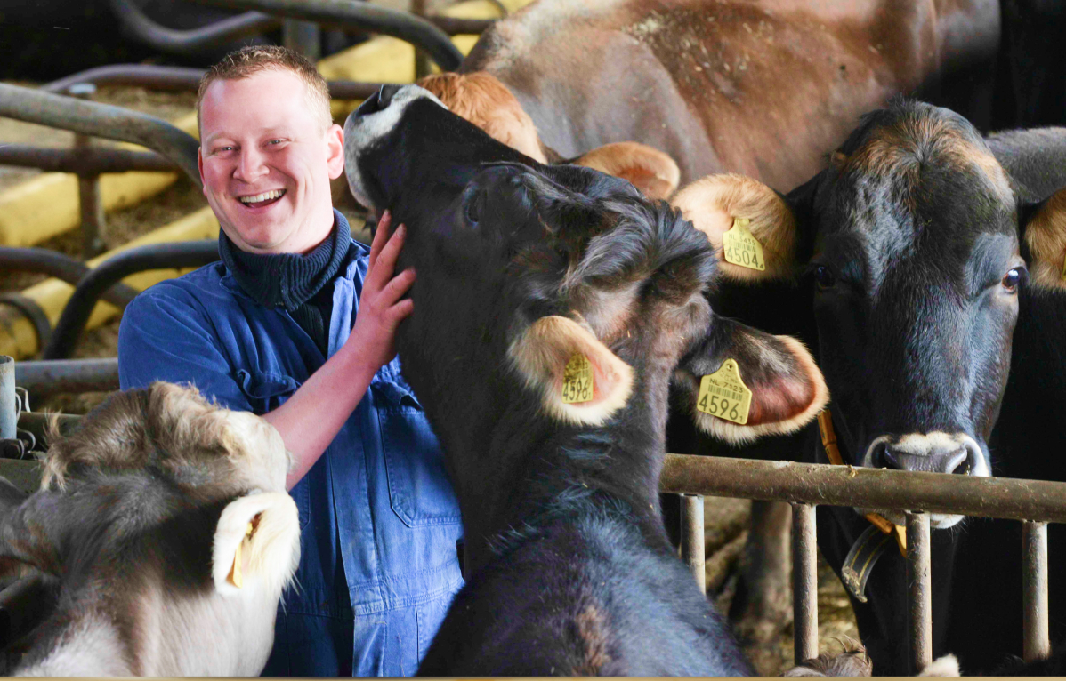 Een boer met een van zijn koeien