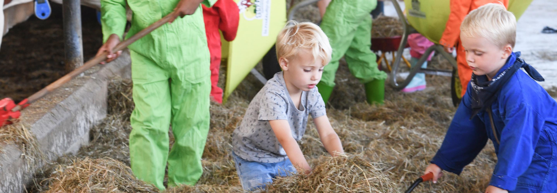 Kinderen helpen op de boerderij