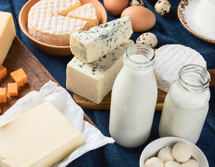 Verschillende soorten kazen en kannen melk