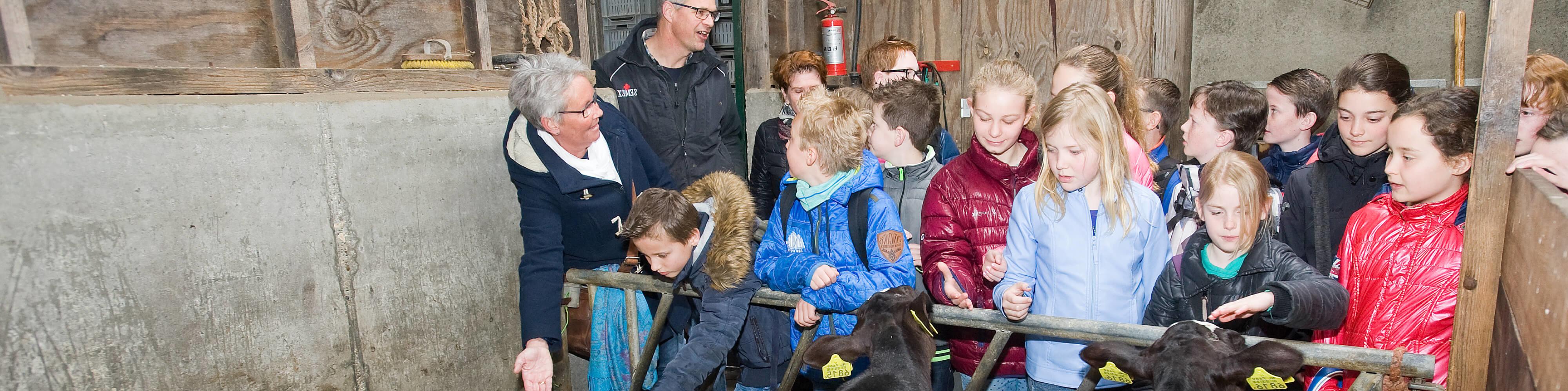 Op boerderij excursie met de klas