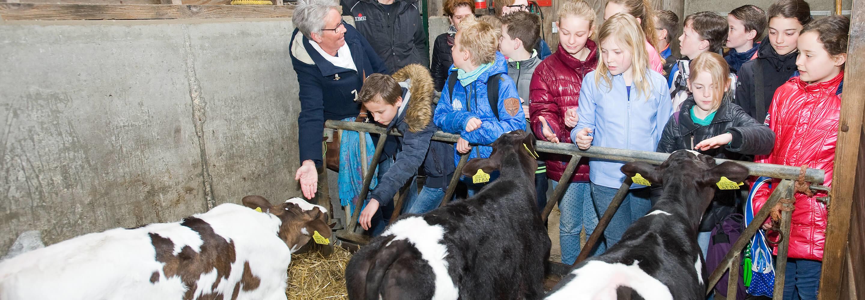 Met de klas op boerderij excursie