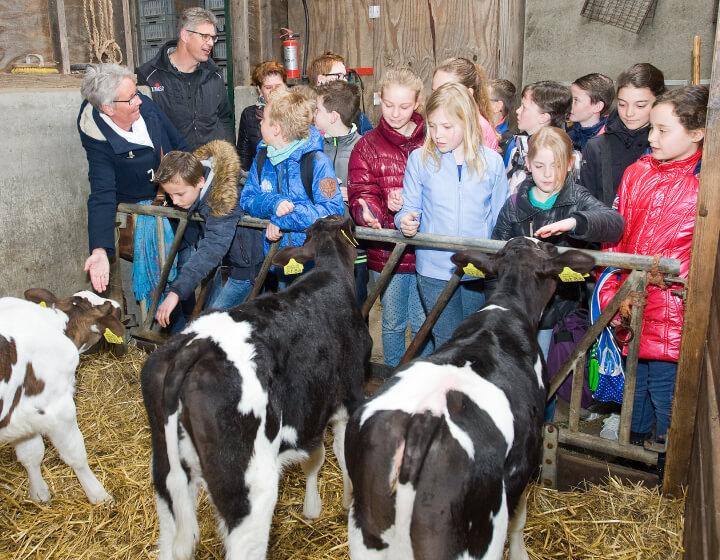 Klas op excursie op de boerderij